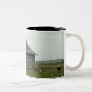 Old Barn and Calf Mug