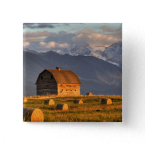 Old barn framed by hay bales and dramatic pinback button
