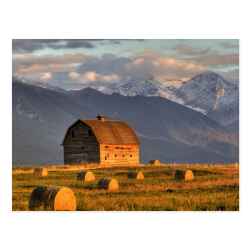 Old barn framed by hay bales and dramatic postcard