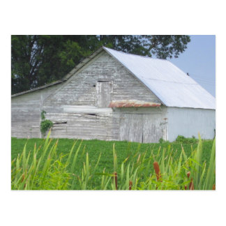 Old Barn In A Green Field Postcard