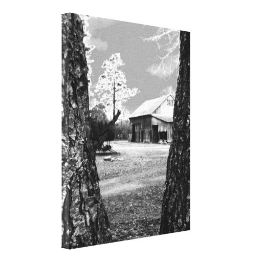 Old Barn Rural Barns Country Black & White Photo Stretched Canvas Prints