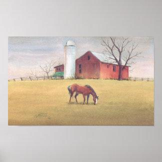 OLD BARN, SILO & HORSE by SHARON SHARPE Print