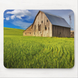 Old Barn Surrounded by Spring Wheat Field 1 Mouse Pad