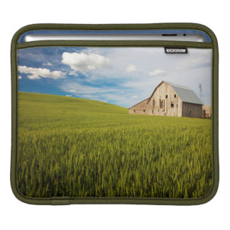 Old Barn Surrounded by Spring Wheat Field 2 iPad Sleeve