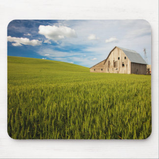 Old Barn Surrounded by Spring Wheat Field 2 Mouse Pad