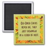 old biker chicks humor 2 inch square magnet
