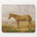 Old Billy, a Draught Horse, Aged 62 (oil on panel) Mouse Pad