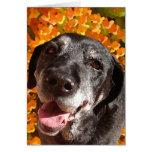 Old Black Labrador Greeting Card