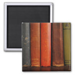 Old Books Photograph Magnet