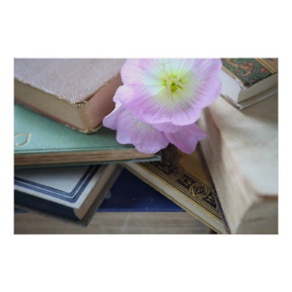 Old books with pink flowers poster
