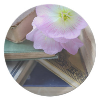 Old books with primroses plate