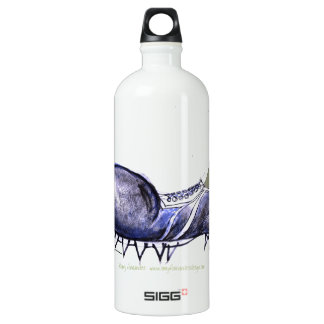 old boot, tony fernandes aluminum water bottle