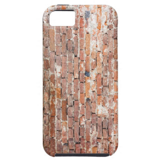 Old Brick Wall iPhone SE/5/5s Case