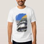 Old Buffalo Savings Bank, Main Street, Buffalo T-shirt