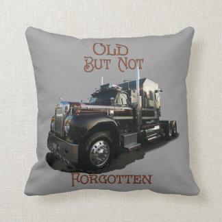 Old But Not Forgotten Pillows