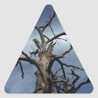 Old but proud triangle sticker