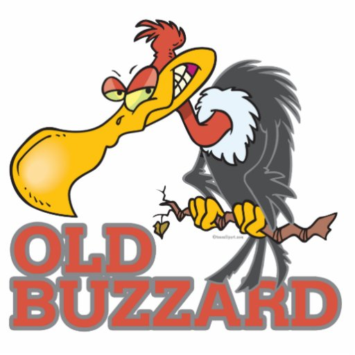 old buzzard funny cartoon character photo sculpture  Zazzle