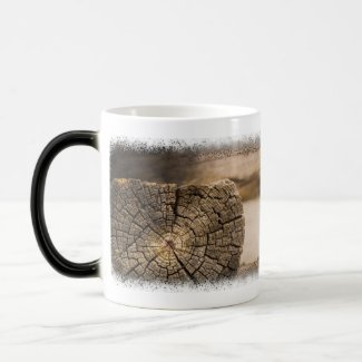Old Cabin Textures Coffee Mugs
