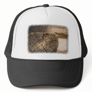 Old Cabin Textures Hat