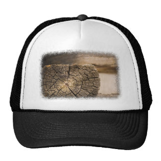 Old Cabin Textures Trucker Hat