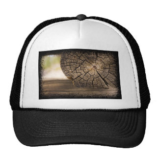 Old Cabin Wood Textures Trucker Hat