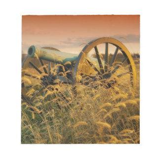 Old cannon in a field memo notepads