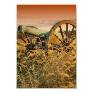 Old Cannon in Antietam Card