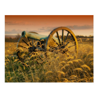 Old Cannon in Antietam Postcard