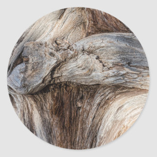 Old Canyon Tree Texture Classic Round Sticker