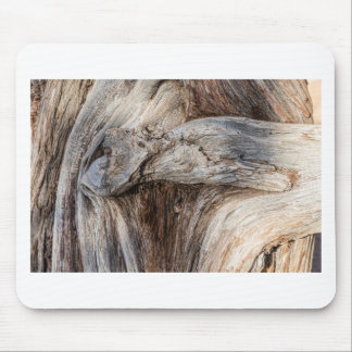 Old Canyon Tree Texture Mouse Pad