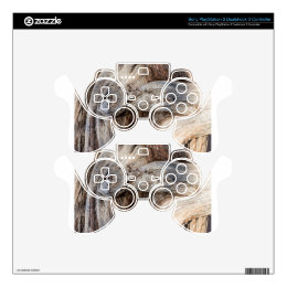 Old Canyon Tree Texture PS3 Controller Skins