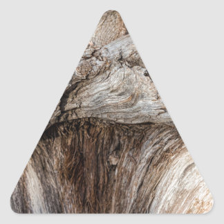 Old Canyon Tree Texture Triangle Sticker