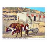 Old Caretta, Pueblo of Laguna, New Mexico Postcard