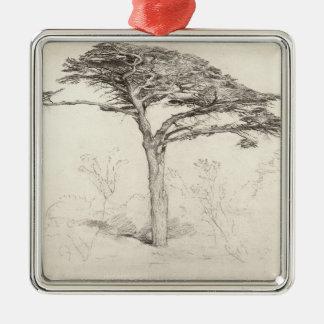 Old Cedar Tree in Botanic Garden, Chelsea, 1854 (p Metal Ornament
