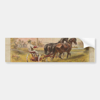 Old Ceifador with pair of horses Bumper Sticker