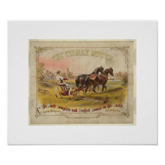 Old Ceifador with pair of horses Poster