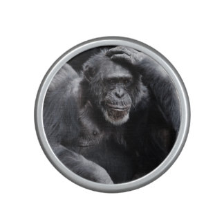Old Chimpanzee bluetooth speaker