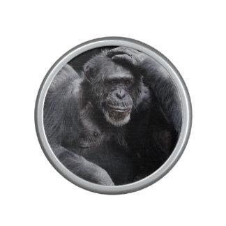 Old Chimpanzee bluetooth speaker