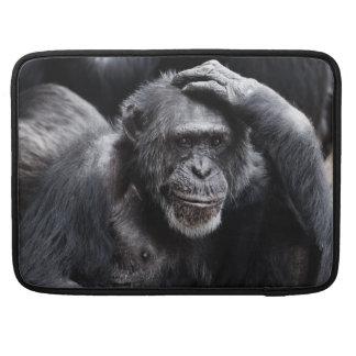 Old Chimpanzee MacBook sleeves