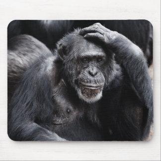 Old Chimpanzee mousepad
