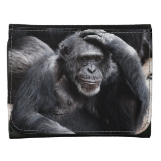 Old Chimpanzee wallets