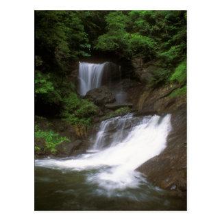 Old City Falls Vermont Postcard