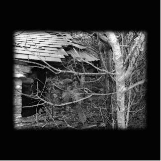 Old cottage and Tree. Black and white. Cutout