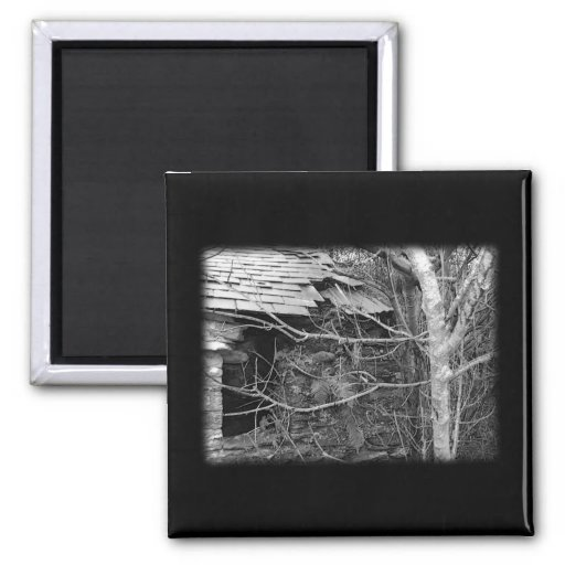 Old cottage and Tree. Black and white. 2 Inch Square Magnet