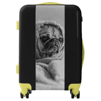 Old Country Pug Luggage