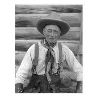 Old cowboy postcard