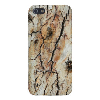 Old cracked wood natural tree bark picture cover for iPhone SE/5/5s