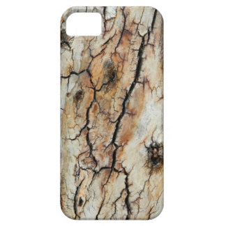Old cracked wood natural tree bark picture iPhone SE/5/5s case