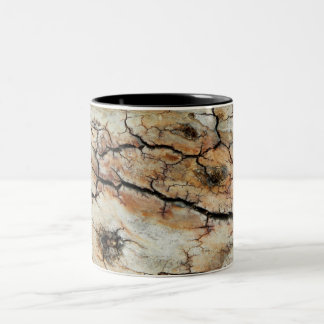 Old cracked wood natural tree bark picture Two-Tone coffee mug