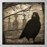 Old Crow Print